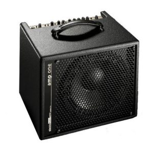 AER Bass Combo Amps