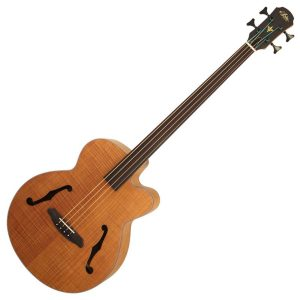 Aria Acoustic Bass Guitars