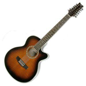 Ashton 12 String Acoustic Guitars