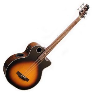 Boulder Creek Acoustic Bass Guitars