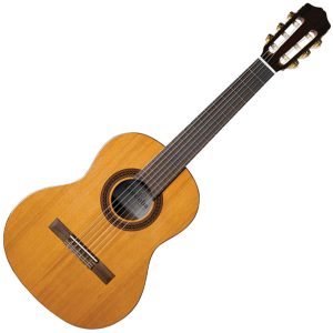 Cordoba Beginner Acoustic Guitars