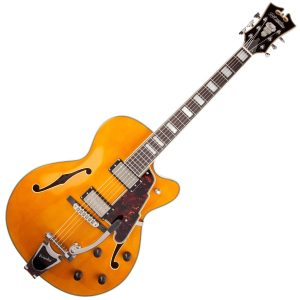 Dangelico Hollowbody Electric Guitars