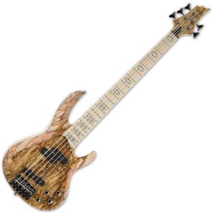ESP 5 String Bass Guitars