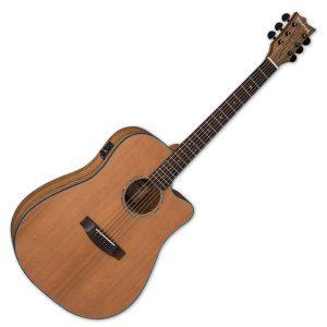 ESP Electro Acoustic Guitars