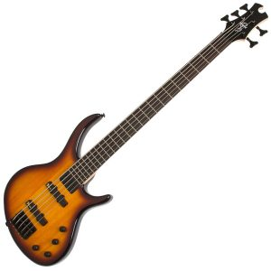 Epiphone 5 String Bass Guitars