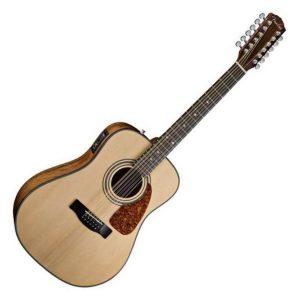 Fender 12 String Acoustic Guitars