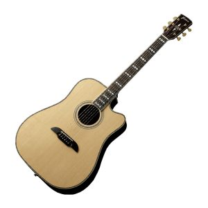Framus Electro Acoustic Guitars