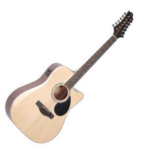 Gregg Bennet 12 String Electro Acoustic Guitars