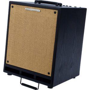 Ibanez Acoustic Combo Amp