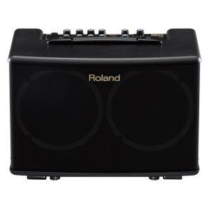 Roland Acoustic Practice Amp
