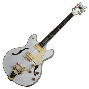 Schecter Hollowbody Electric Guitars