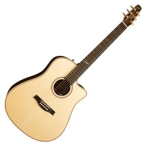 Seagull Electro Acoustic Guitars