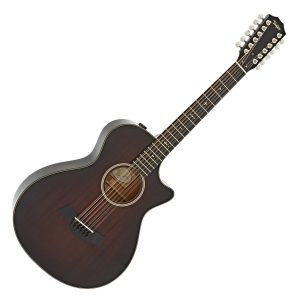 Taylor 12 String Acoustic Guitars