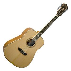 Washburn 12 String Acoustic Guitars