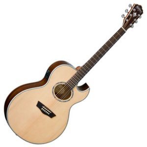 Washburn Electro Acoustic Guitars