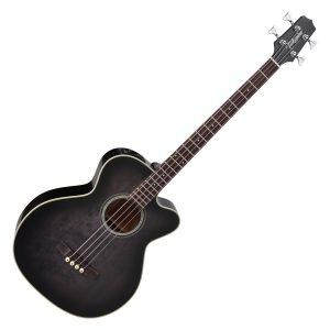 Takamine Acoustic Bass Guitars