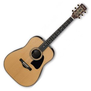 Ibanez Acoustic Guitars
