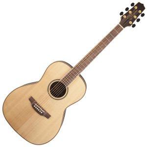 Takamine Acoustic Guitars