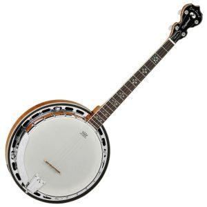 Tanglewood Banjos