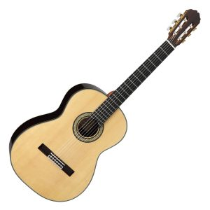 Takamine Classical Guitars