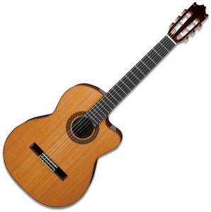 Ibanez Classical Guitars