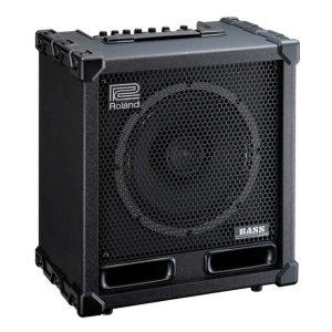 Roland Cube Bass Amp