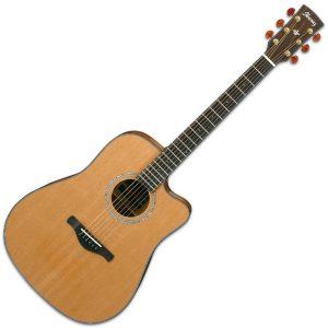 Ibanez Electro Acoustic Guitars