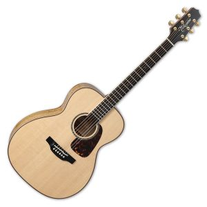 Takamine Electro Acoustic Guitars