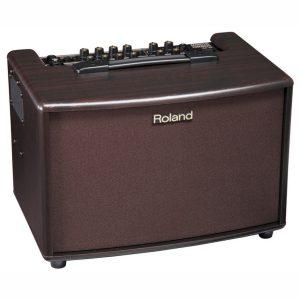 Roland AC-60 Acoustic Amp