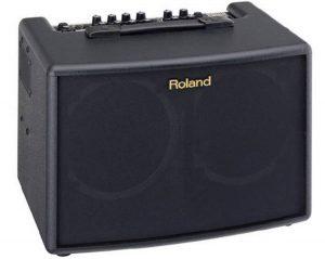 Roland Acoustic Amps